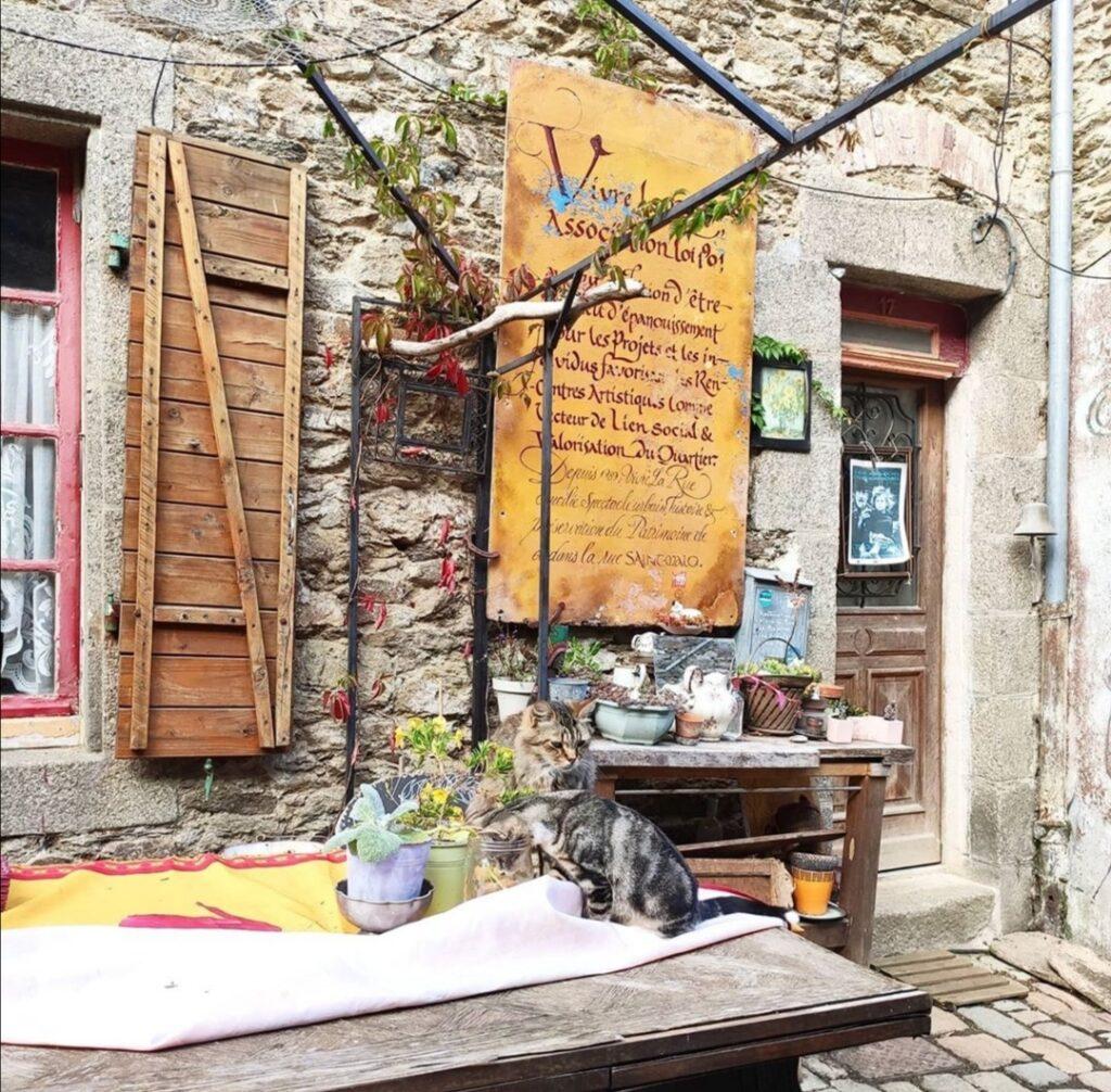 Visitare Brest e la Bretagna. Gatti sul tavolo in uno scorcio di Roue St.Malo