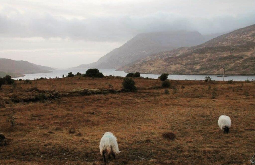 Connemara in Irlanda. Immagini del paesaggio.
